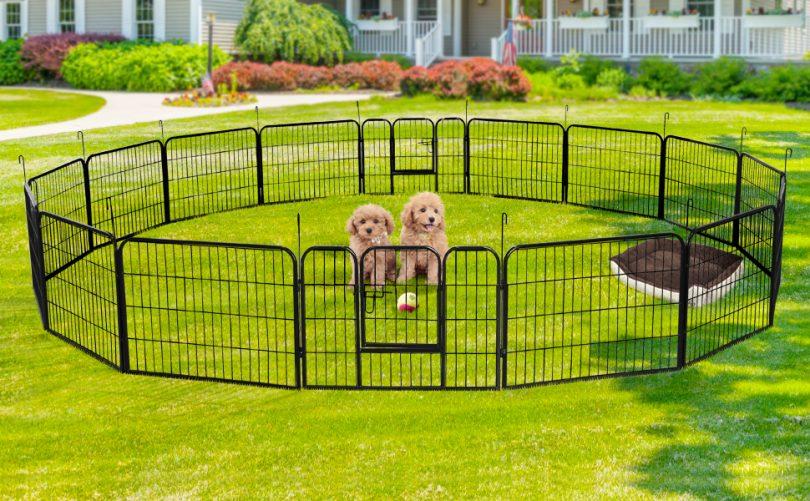 Corral para Perros