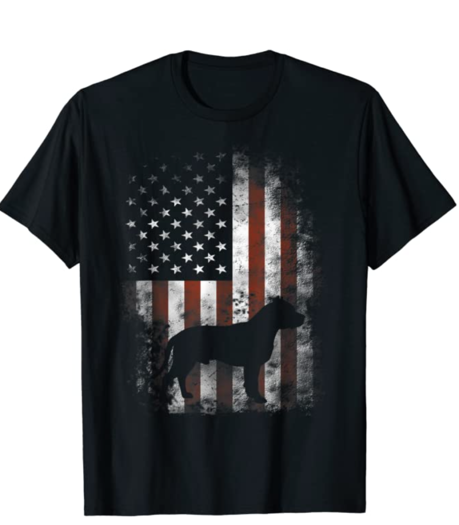 APT - Camiseta de la bandera de USA